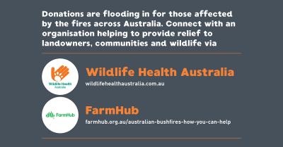 AHA Donations Bushfires Infographics5 TW
