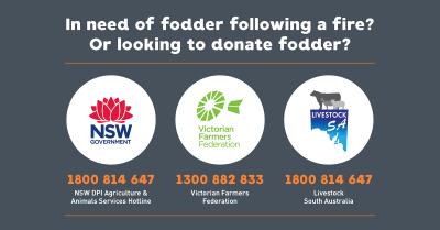 AHA Fodder assistance Bushfires Infographics3 TW