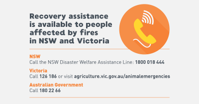 AHA Recovery assistance Bushfires Infographics2 TW